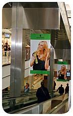 Banner Schwarzkopf
