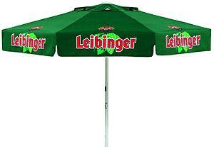 Maxi Leibinger